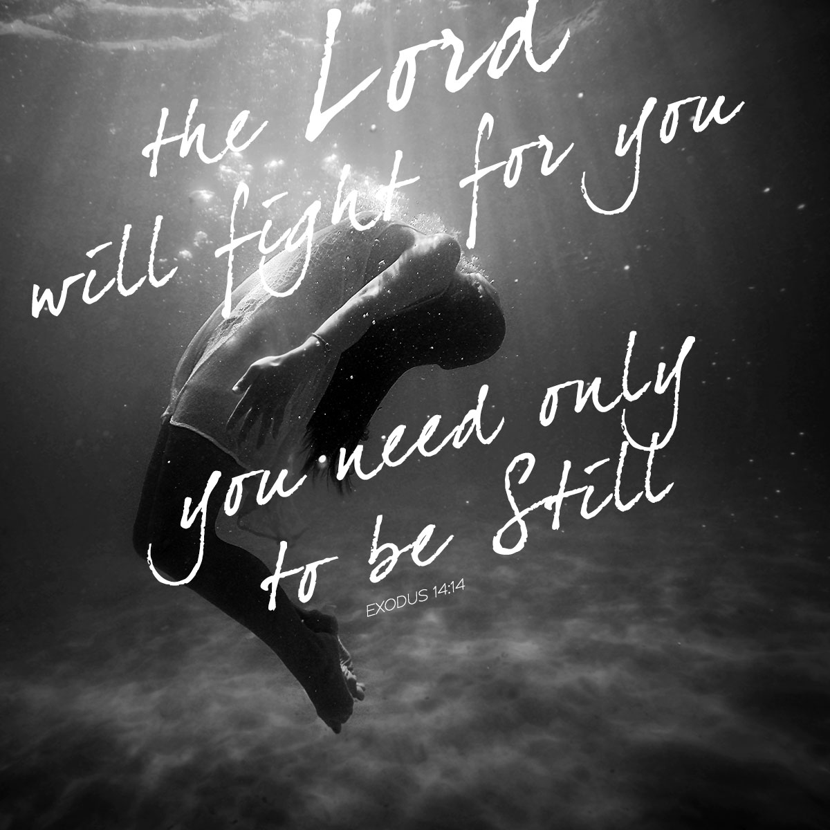 """The Lord will fight for you, you need only to be still."""" Exodus 14:14"""