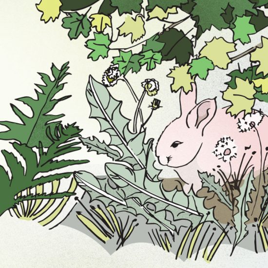Illustration of a rabbit hiding under a tree amidst soft dandelions