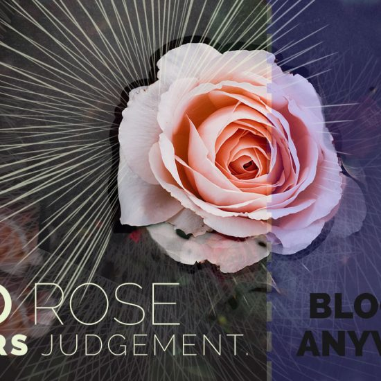 No Rose Fears Judgement. She blooms anyway. Rose and text on abstract background.