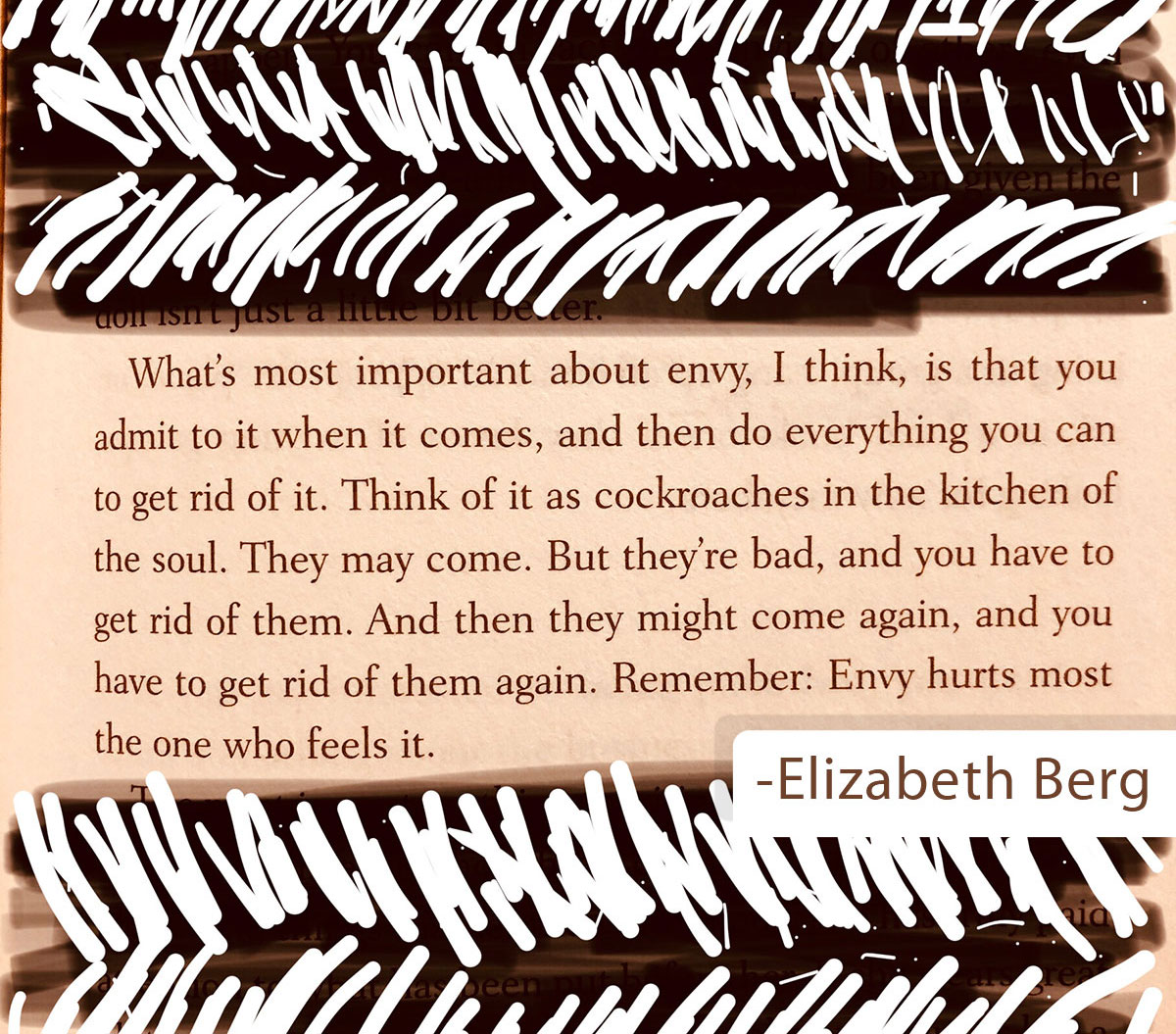 "Elizabeth Berg quote that describes envy as ""the cockroaches of the soul"""