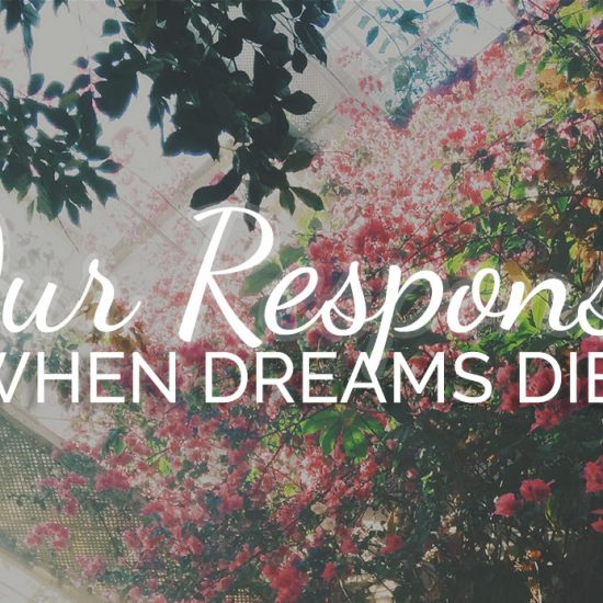 Our Response When Dreams Die text on floral background