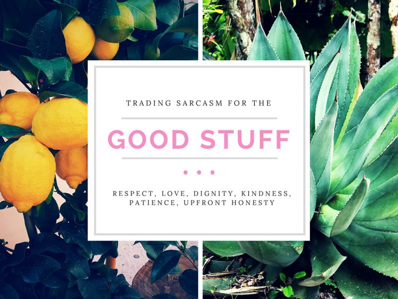 Trading Sarcasm for the Good Stuff: Respect, love, dignity, kindness, patience, upfront honesty